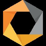 Google NIK Logo
