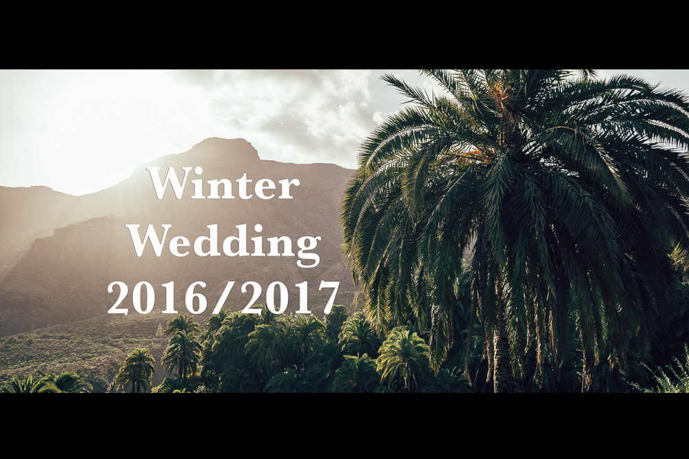 Winter Wedding 2016