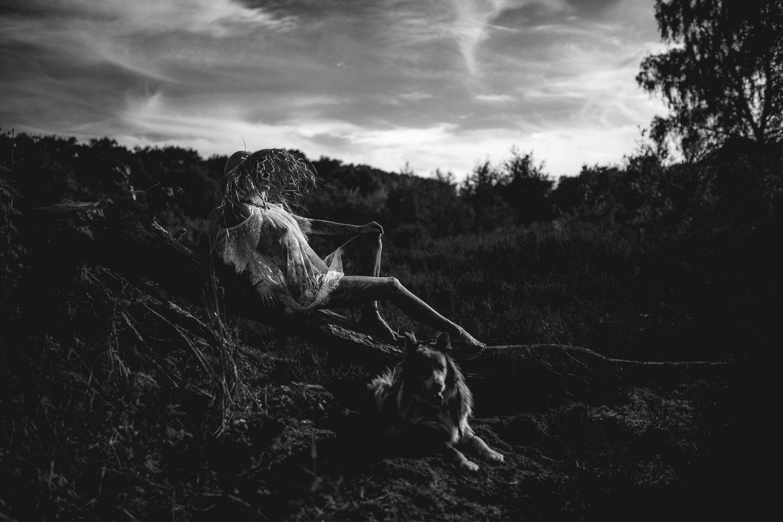 Fotograf Wahner Heide